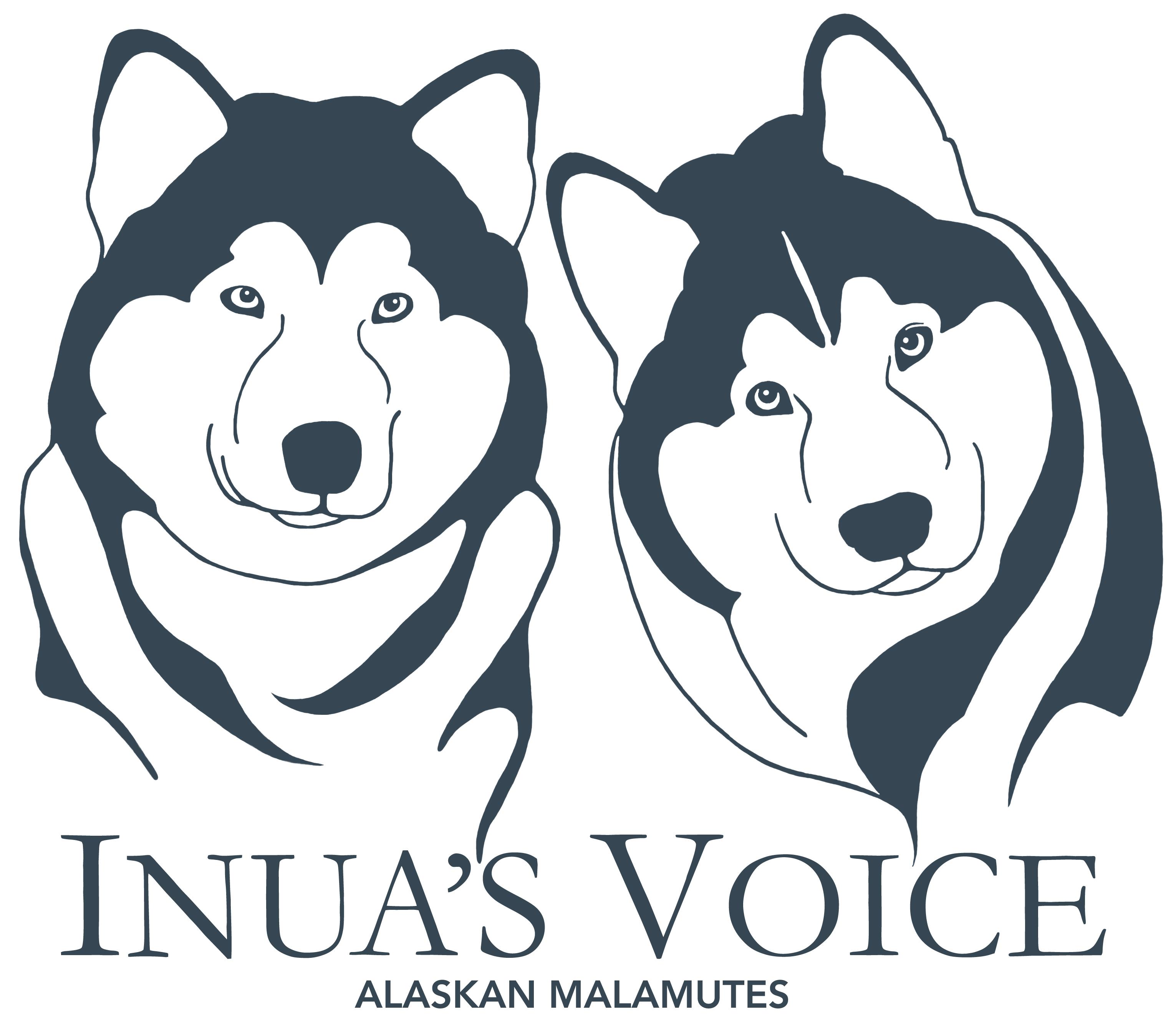 Logo Inua's Voice